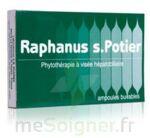 RAPHANUS S.POTIER BIOLOGIQUE, bt 12 à Bergerac