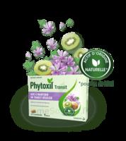 Phytoxil Transit Comprimés B/20 à Bergerac