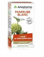Arkogélules Marrube blanc Gélules Fl/45 à Bergerac