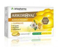 Arkoroyal Propolis Pastilles Adoucissante Gorge Guimauve Miel Citron B/24 à Bergerac