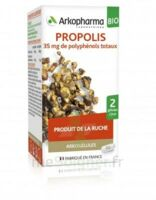 Arkogélules Propolis Bio Gélules Fl/45 à Bergerac