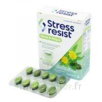 Stress Resist Comprimés Stress & Fatigue B/30 à Bergerac