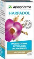 ARKOGELULES HARPAGOPHYTON, 150 gélules à Bergerac