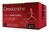 Santé Verte Circulymphe Triple Actions B/30 à Bergerac
