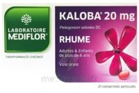 KALOBA 20 mg Comprimé pelliculé Plq/21 à Bergerac