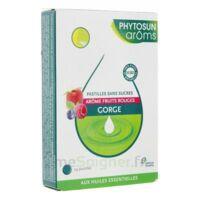PHYTOSUN AROMS sans sucre Pastille fruits rouges B/24 à Bergerac
