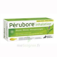 PERUBORE Caps inhalation par vapeur inhalation Plq/15 à Bergerac