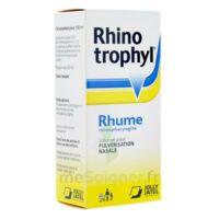 RHINOTROPHYL Solution pour pulvérisation nasale 1Fl/12ml à Bergerac