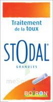 Boiron Stodal Granules Tubes/2 à Bergerac