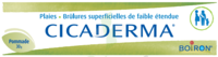 Boiron Cicaderma Pommade à Bergerac