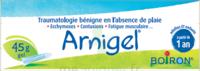 Boiron Arnigel Gel T/45g à Bergerac