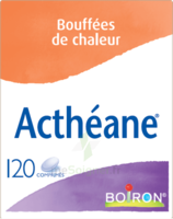 Boiron Acthéane Comprimés B/120 à Bergerac